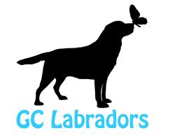 GC Labradors Logo